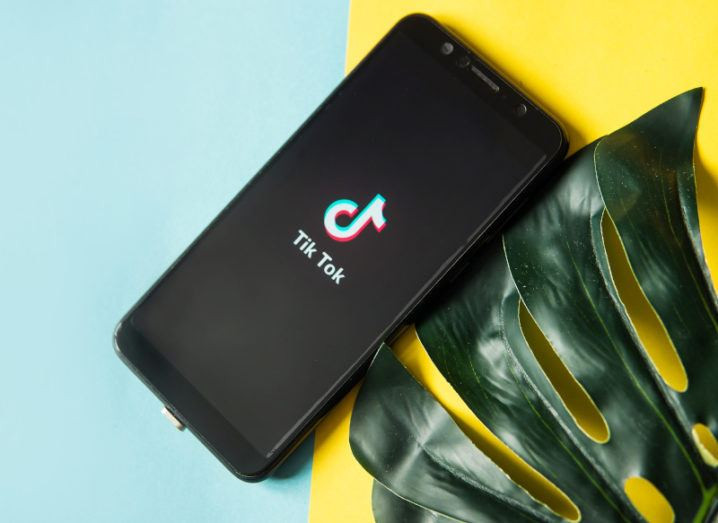 A phone lies on a yellow and blue background beside a small plant. The screen has the TikTok logo on the screen.