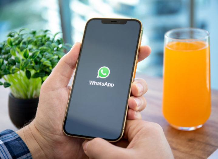 A person holding a black smartphone with the WhatsApp logo on the screen. A table with a plant and glass of orange juice is in the background.