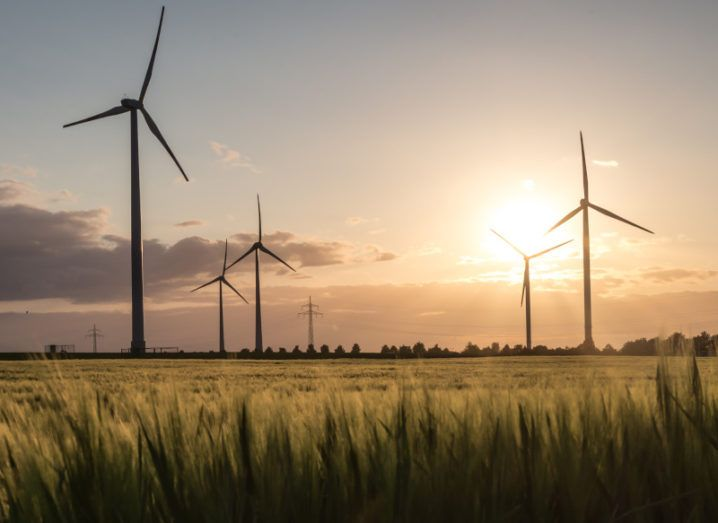 A large windfarm in a field at sunset.
