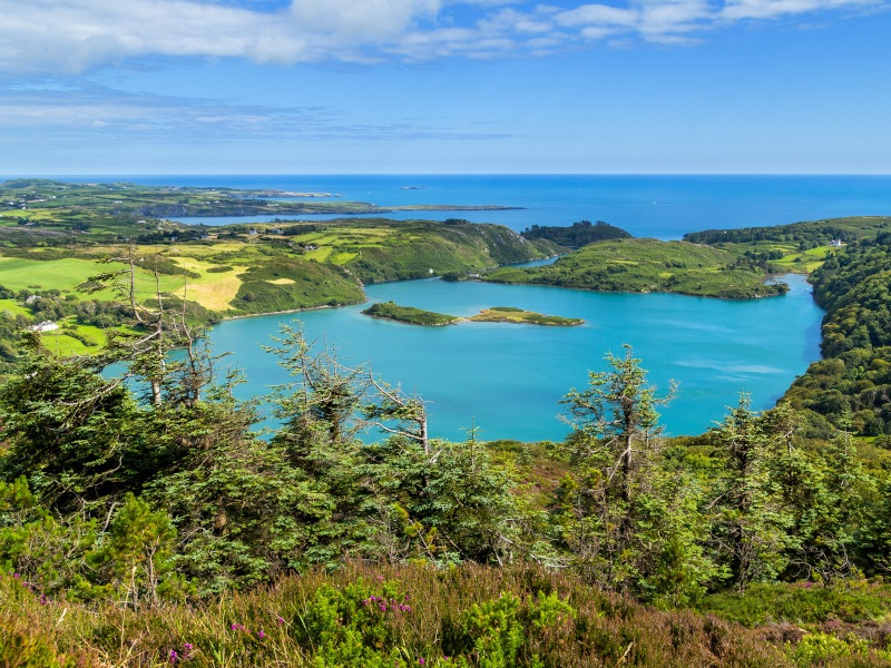 How a west Cork lough is offering a window to the changing ocean