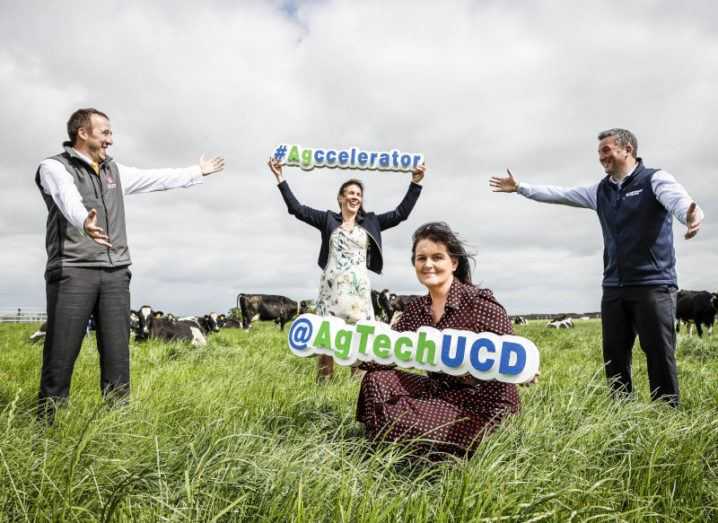 Four people stand in a field with cows in the background. One woman is kneeling in the foreground, holding a sign that says 'AgTechUCD'.