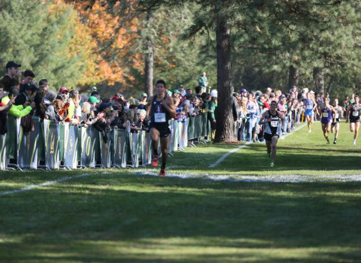 Athletes compete in the 2017 NCAA Pac-12 cross country championships.