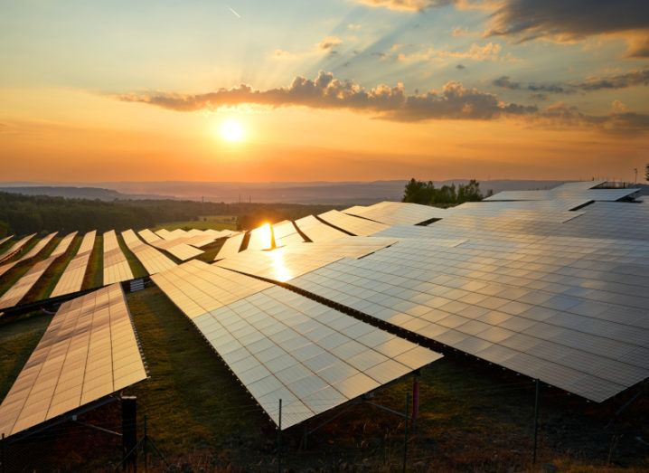 A stock image of photovoltaic solar panels at sunset.