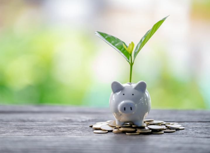 A small white piggy bank on top of a pile of coins. A green plant is sprouting from inside the piggy bank.