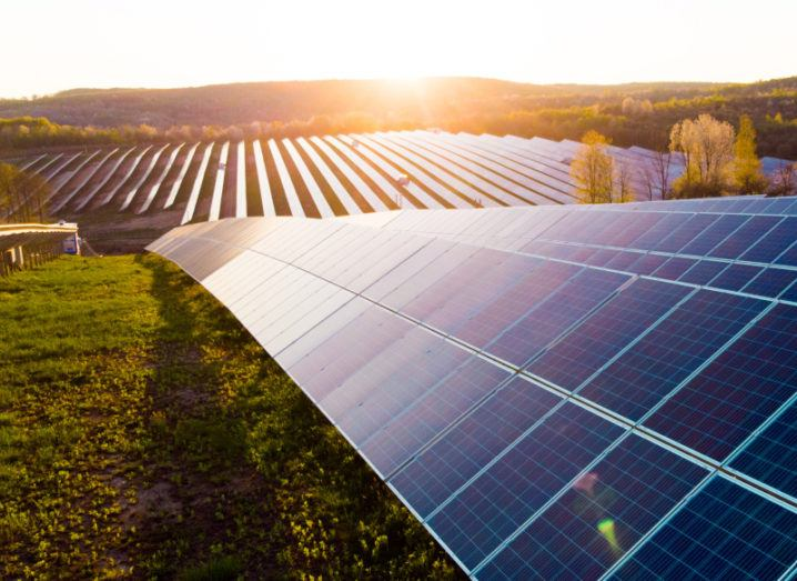 A solar farm consisting of a field filled with large solar cells. The sun is rising over the solar farm in the distance.