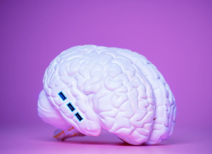 A model of the human brain with USB ports along one side, symbolising a brain-computer interface.