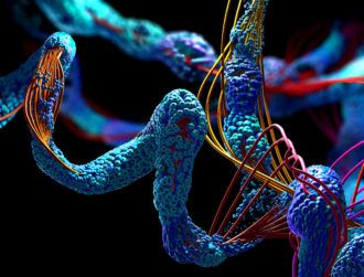 DeepMind delivers database of protein structures