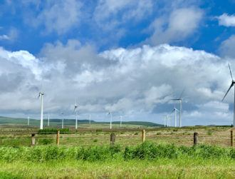Bord na Móna is creating hundreds of jobs over the next five years