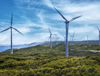 Project could see windfarms in Ireland become 'mini nature reserves'