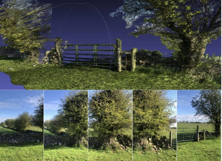 The top image is a computer representation of a hedgerow generated by Farmeye and the ESA. The bottom row of images consists of the original photographs taken to create the computer representation.