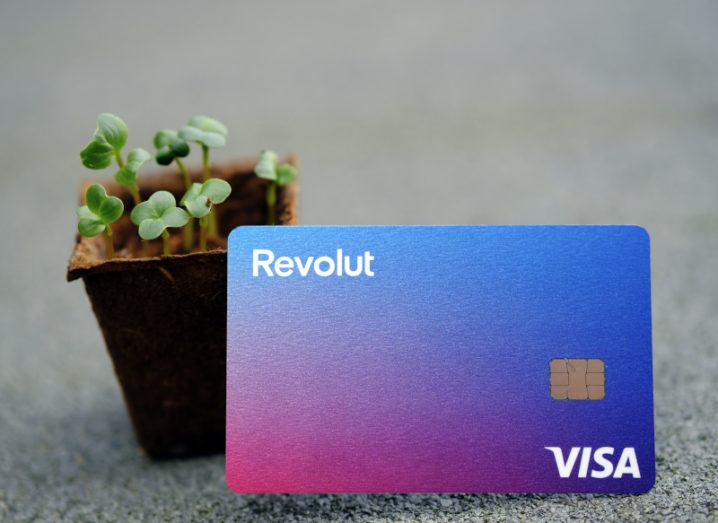 A Revolut bank card is leaning against a potted plant.