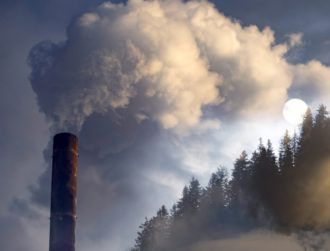 Irish firms lag behind others in Europe on climate investments, EIB finds