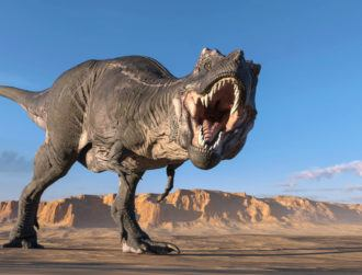 Scientists say T-rex had complex sensing nerves in its jaw