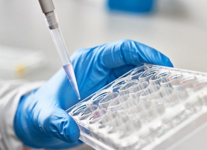 A stock image of a dropper and some test tubes in a lab.