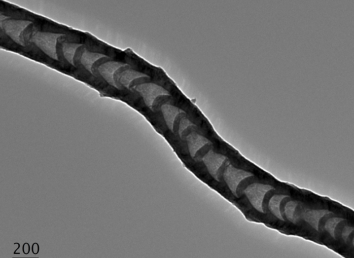 Zoomed in image of a black carbon nanotube against a grey background.