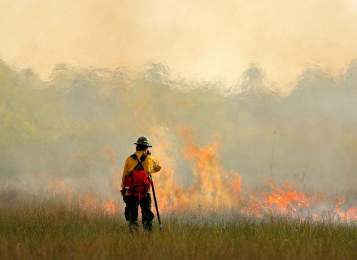 A lone firefighter stands in front of a large blaze in Florida in the US. The flames are as tall as the person and are creating waves of heat on top of the inferno. It highlights the severity of the climate crisis.