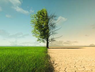 UN report warns 2030 emissions goals 'not enough' ahead of COP26